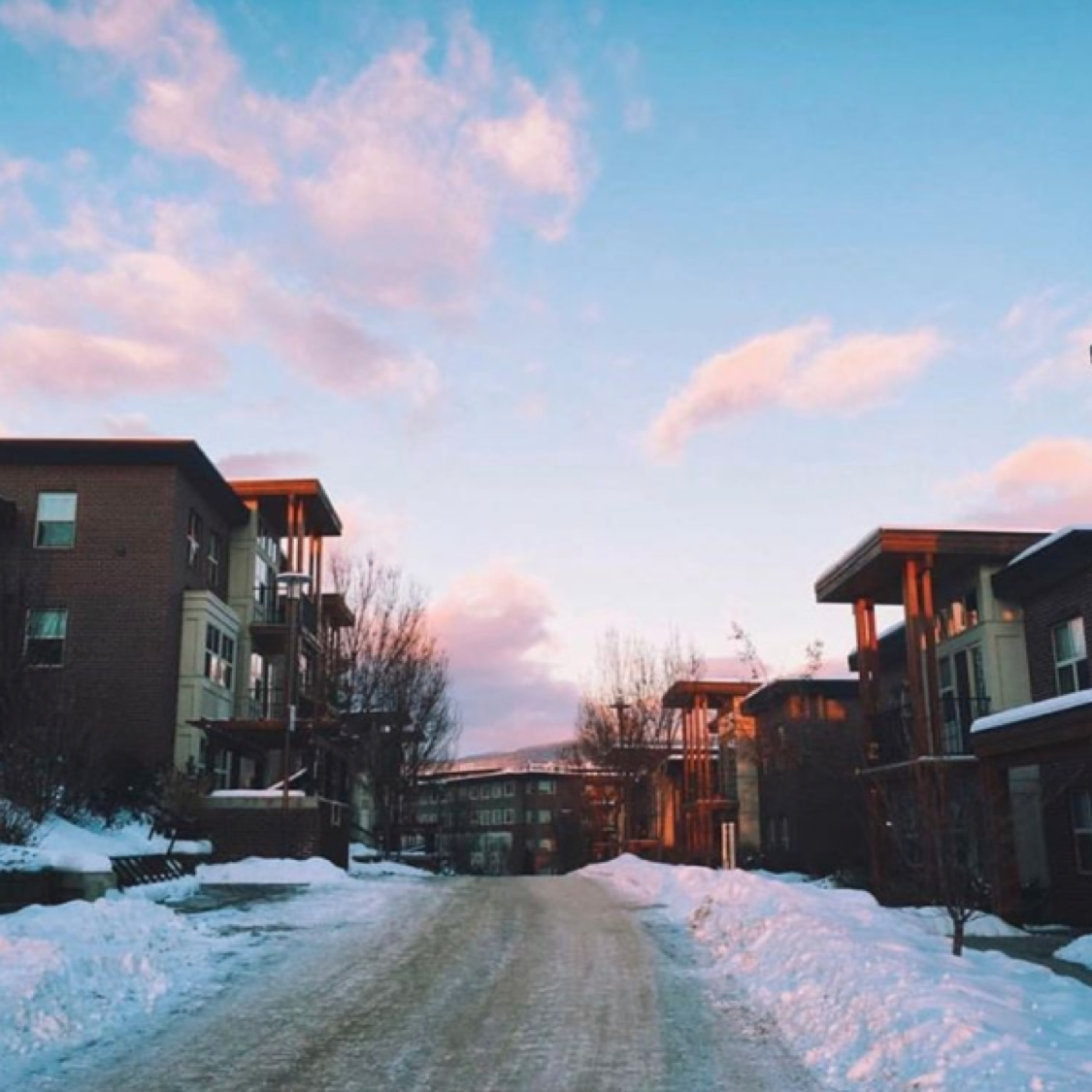 Beautiful clear skies at UBC's Okanagan campus!! by: @joanneelee
